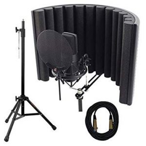 sE Electronics X1 S Studio Bundle